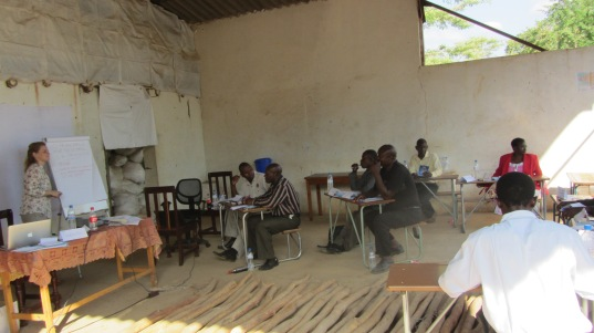 Capacity building workshop held on site by GDM Africa